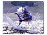 Black-Blue Marlin Screen Saver